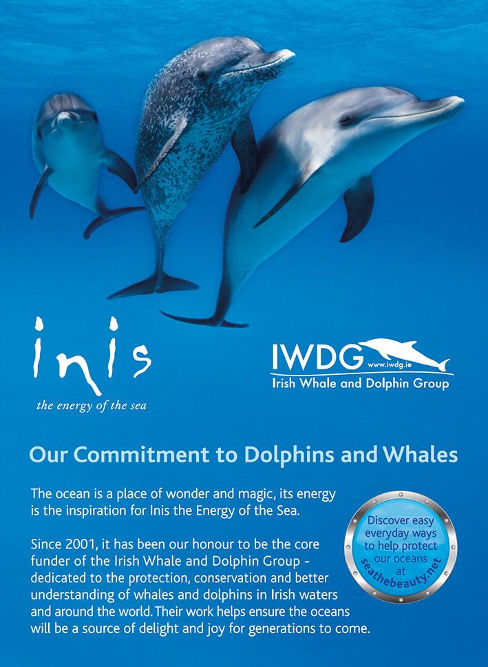 Dolphin Ocean Conservation Shelf Talker.