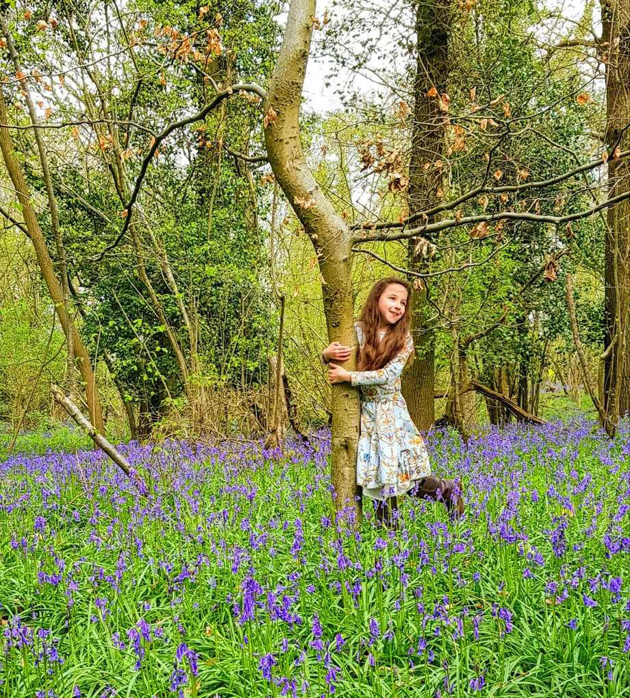 M. Mowbray My Daughter in Bluebell Woods