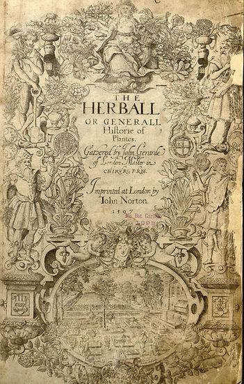 john, gerard, great, herbal, herball, shakespeare, image, portrait, william