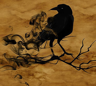 synchronicity, coincidence, raven, paranormal, unexplained