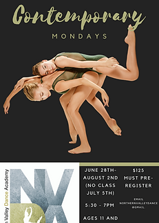 NVDA Summer Contemporary.PNG