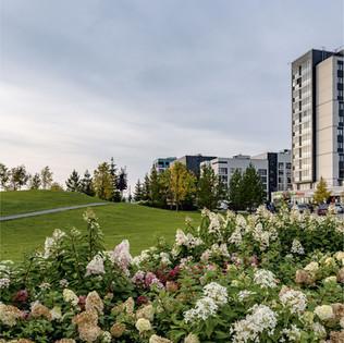 Выставка  «Ландшафтный Екатеринбург: новые парки»