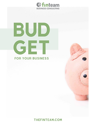 Budget for your business workbook - FinT