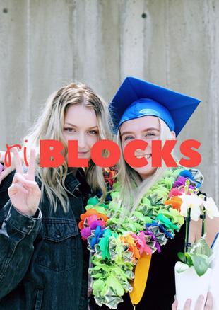 Storiblocks