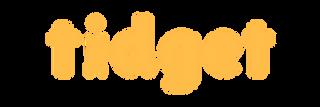 Tidget Logo Long Orange.png
