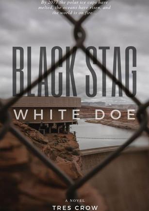 Black Stag, White Doe
