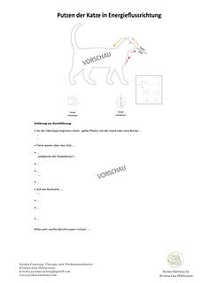 Vorschau Putzplan Katze.png