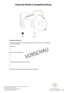 Energetischer Putzplan Pferd