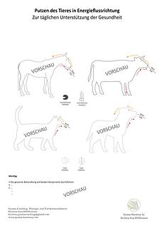 Vorschau Tiere Putzplan.png