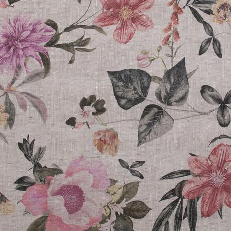 Botanical - Blush