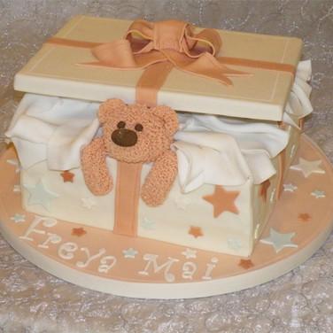 1 Teddy-Cake.jpg