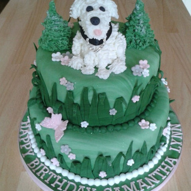 371 2 Tier Bichon Birthday.jpg