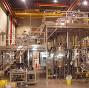 Custom Stainless Steel Sanitary Access Platform