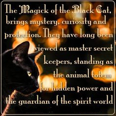 The magick of black cats. groundedpsychic.com