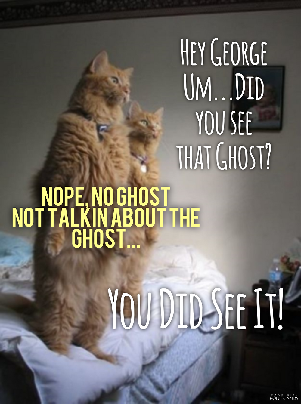 I didn't see no ghost!