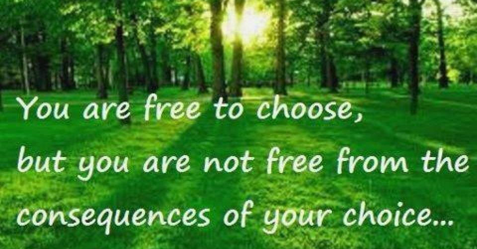 You are free to choose. groundedpsychic.com
