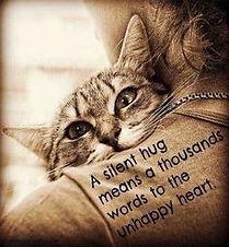 Cat groundedpsychic.com