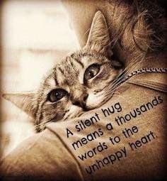 Healing Pet Sadness.groundedpsychic.com