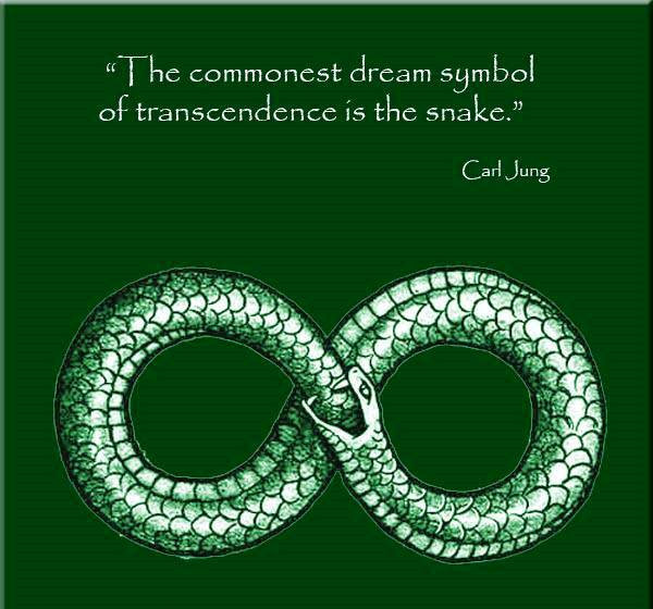 Snake in dreams symbold of Transcendence. groundedpsychic.com