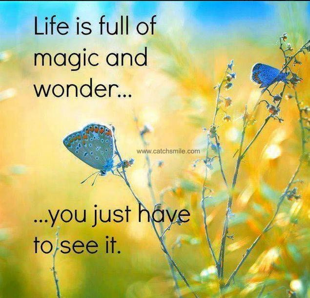 Life is full of magic and wonder... groundedpsychic.com