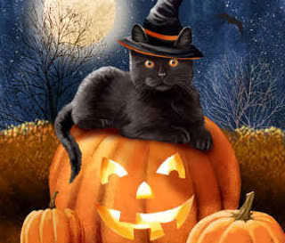 Cat Familiars: Every Witch Needs One!