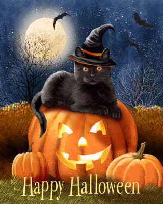 Happy Halloween~Cat Familiar. groundedpsychic.com