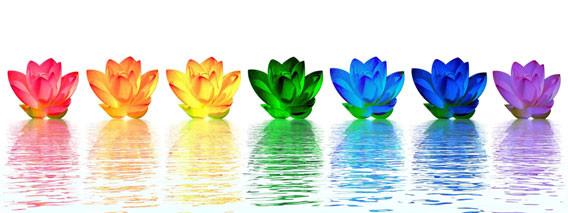 Chakra lotus colors. groundedpsychic.com Laura Zibalese