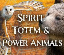 animal spirit guide animal totems groundedpsychic.com