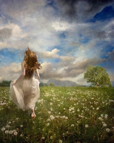 A field of flowers in the afterlife. groundedpsychic.com Laura Zibalese
