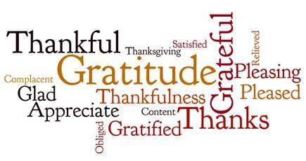 Gratitude word cloud.