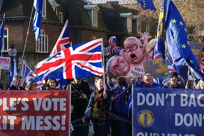 Brexit_Demonstration_Westminster-min.jpg