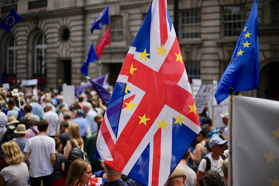 A Brexit demonstration.
