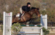 Jumpers1.jpg