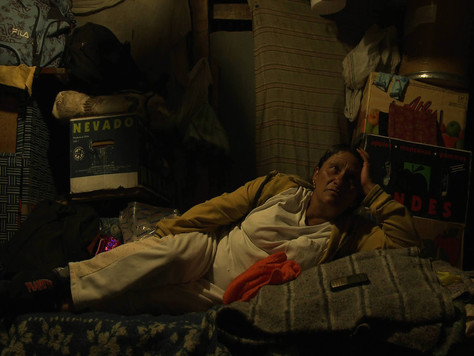 Perros que ladran: cine colombiano