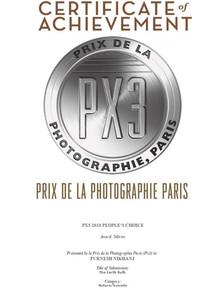Winner of silver spot in PX3 , Paris.