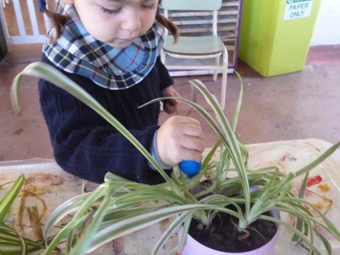 "K2 Naturalistic Week ""Heal the World"""