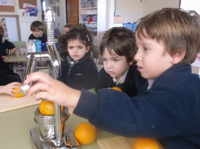K3 Experiencing Food Through our Senses