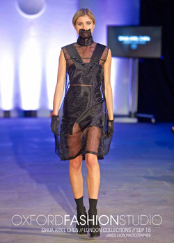 Mouthpiece & Sheer Dress