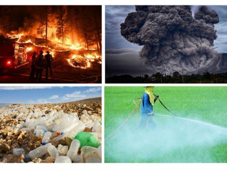 ¿Qué es Emprender con propósito? ¿Qué es ser sustentable?