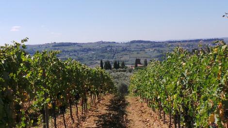 Великолепная Италия. Часть 6-я. Долина Кьянти.