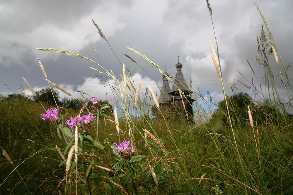 Филипповская. Кенозерский национальный парк. Семейный сайт Татьяны и Игоря Филаткиных.