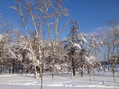 В Москве неожиданно наступила зима...