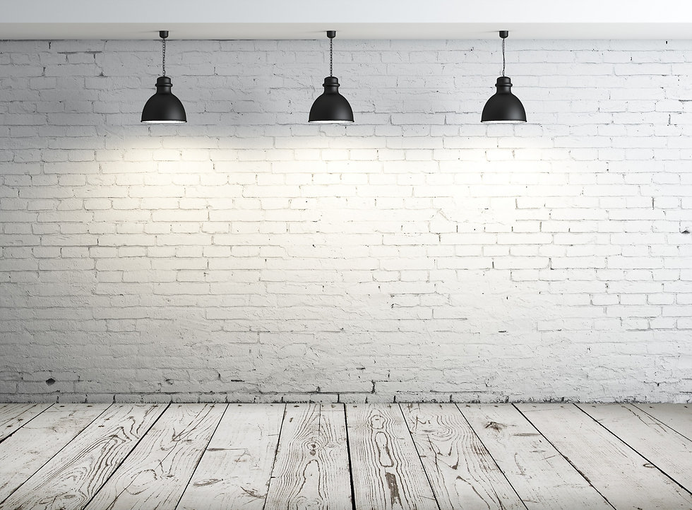 White brick wall with office plant