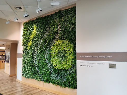 Johnson and Wales University Living Wall