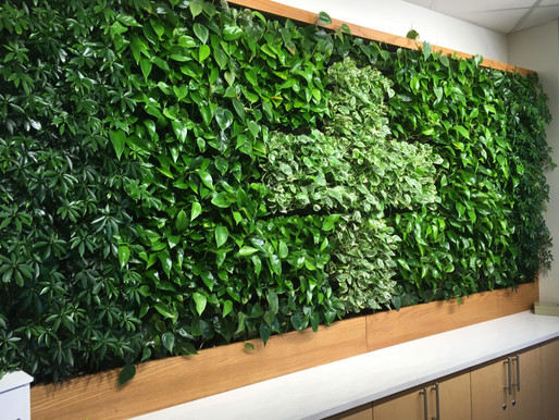 Oh Grow Up: An Introduction To Living Walls And Vertical Gardening