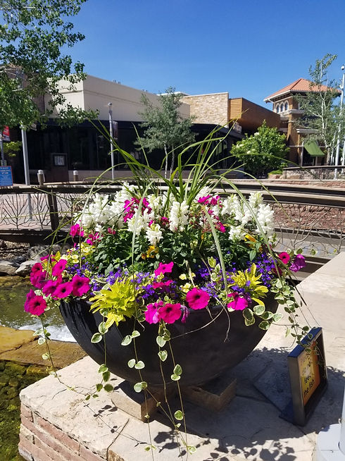 Annuals planted in raised pot at Park Meadows Mall