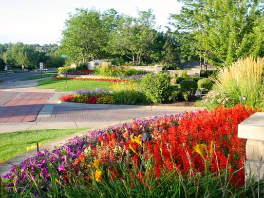 Beautify Your Business: Commercial Landscape Design Ideas
