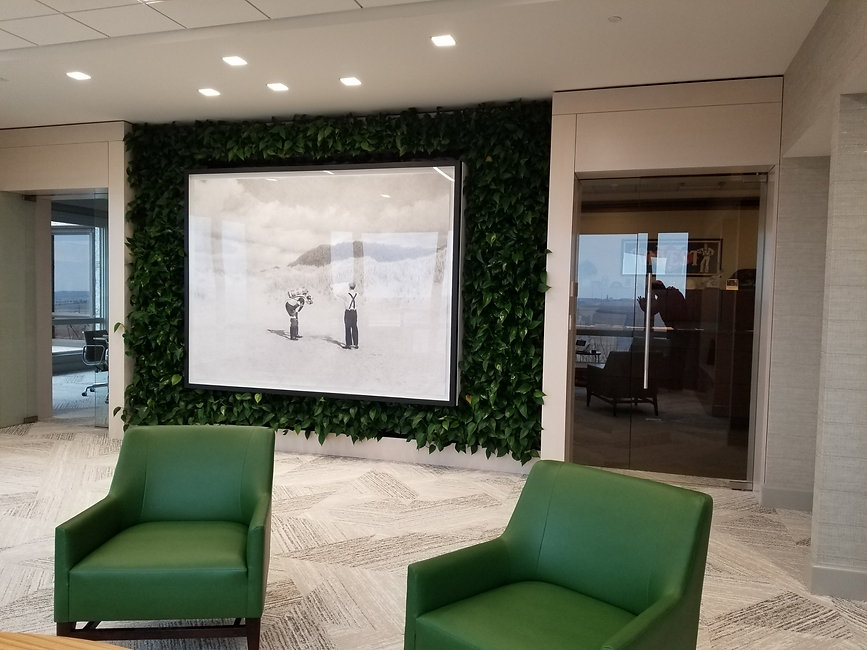 Living wall in office around pensil drawing