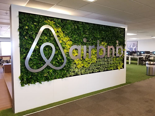 Living wall at AirBnB office