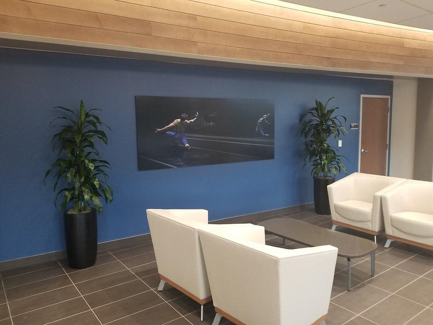 Hospital lobby with tropical plants